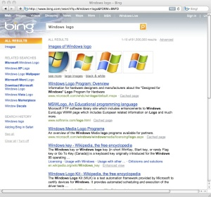 Microsoft's Bing Search Results