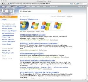 Microsoft's Bing Search Results